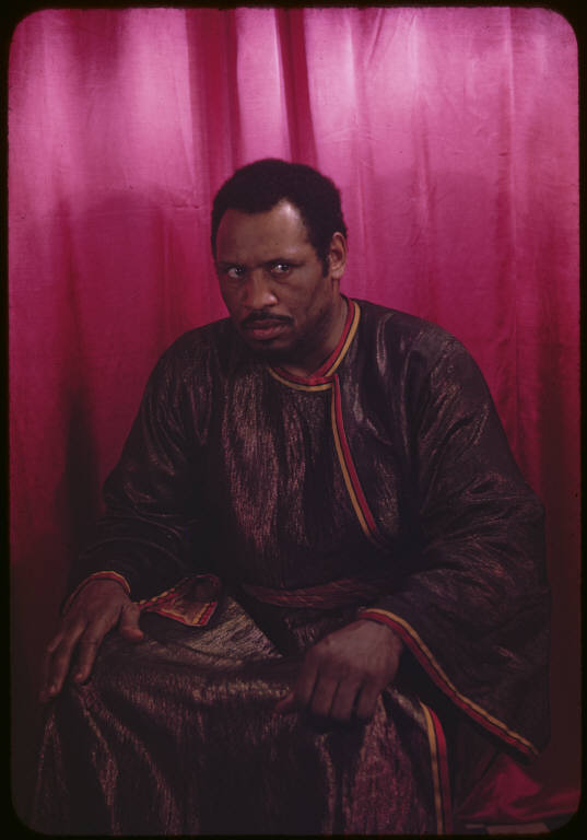 An essay on the testimony of paul robeson